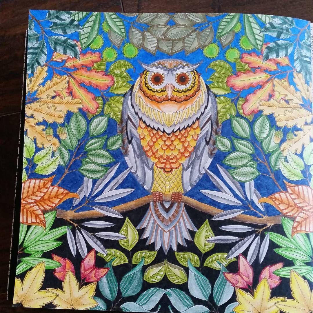 #secretgarden #coloring #johannabasford #owl
