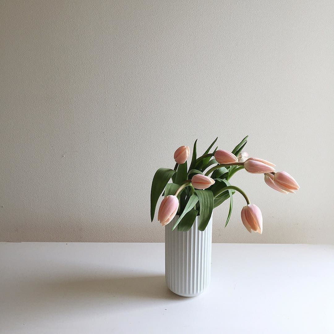 I love simplicity. Have a happy new week! #tulip #lyngbyvase #lyngbyvasen  一種の花をシンプルに活けるのも好きです by nonihana_