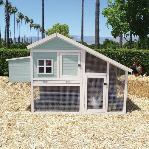 Coops Feathers Extreme Walk In Chicken Coop 220 10 By Innovation Pet For 59999