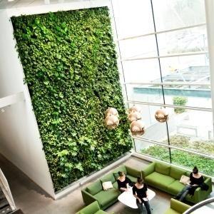 Vertical green indoor plant wall garden indoor plant wall for Indoor living wall systems