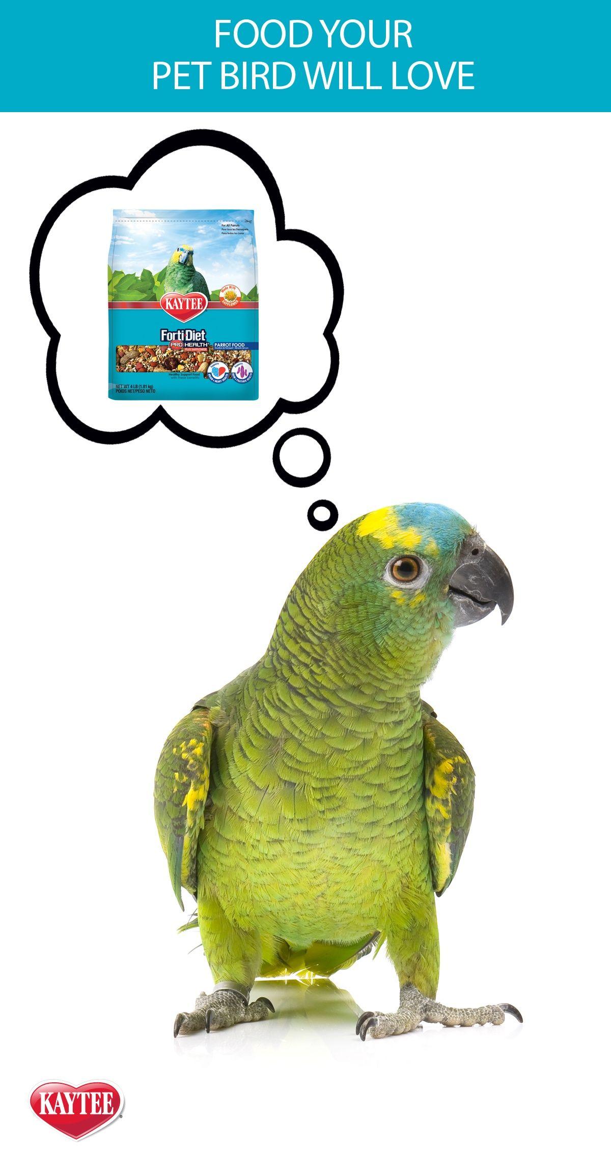 Kaytee Forti Diet Pro Health Bird Food For Parrots