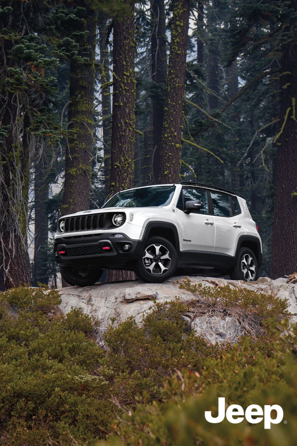 The View From The Top Jeep Renegade Suv Small Suv