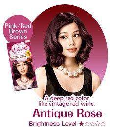 Kao Liese Bubble Hair Color Antique
