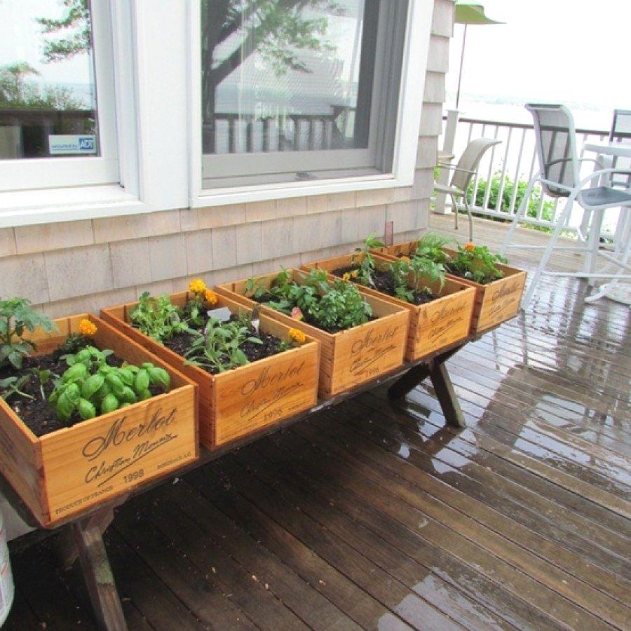 50 Easy Indoor Herb Garden Designs You Can Do Herb ...
