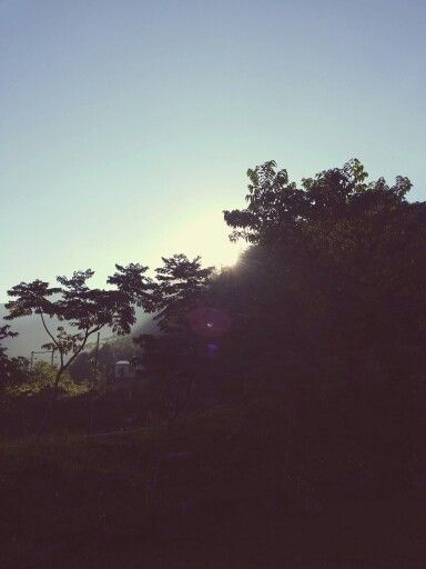 晨曦的太陽