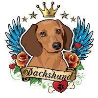 Dachshund Temporary Tattoos Dachshund Rescue Of North America