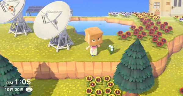 Check out this Animal Crossing New Horizons Switch (ACNH