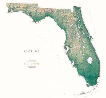 SOLD: Large Laminated Litho Elevation Map of Florida #art #print ...