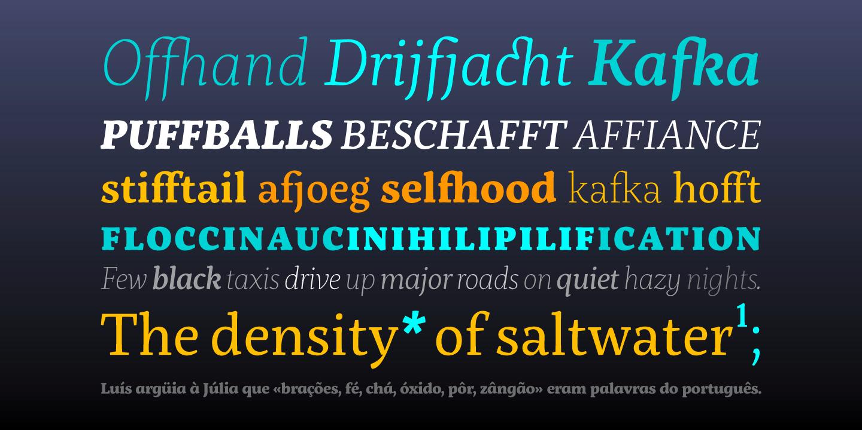 Servus Slab Webfont & Desktop font « MyFonts Myfonts