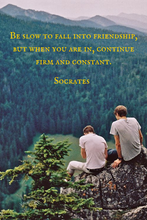 Rumi Quotes About Friendship Adorable The 20 Most Beautiful Friendship Quotes  Socrates Friendship