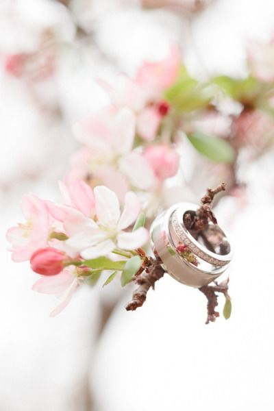 Beautiful ring shot idea (cherry blossoms !!) - California Winter Wedding from Erin Hearts Court + Danielle Ambler