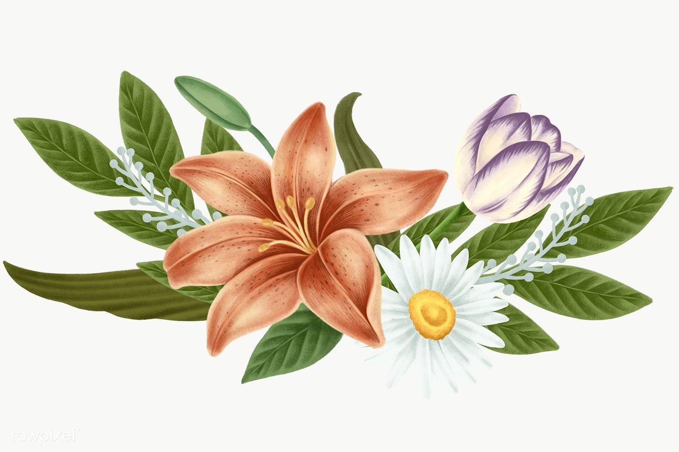Vintage Flower Bouquet Transparent Png Premium Image By Rawpixel Com Noon Flower Illustration Vintage Flowers Flower Drawing