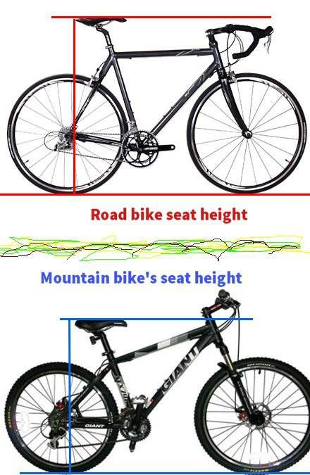 Road Bike Vs Mountain Bike Seat Height Professional