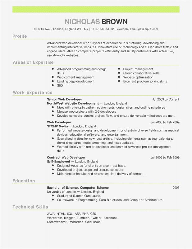 Monthly Seo Report Template Unique Actor Resume Templates Examples Cfo Resume Template Inspiratio Student Resume Template Teacher Resume Examples Resume Skills