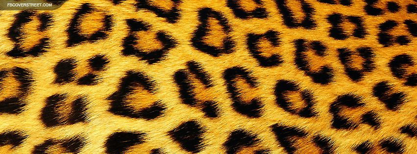 Leopard Print Timeline Covers