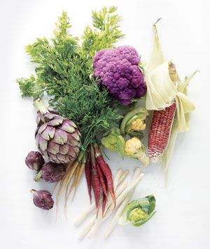 Month-by-Month Guide to Vegetable Gardening