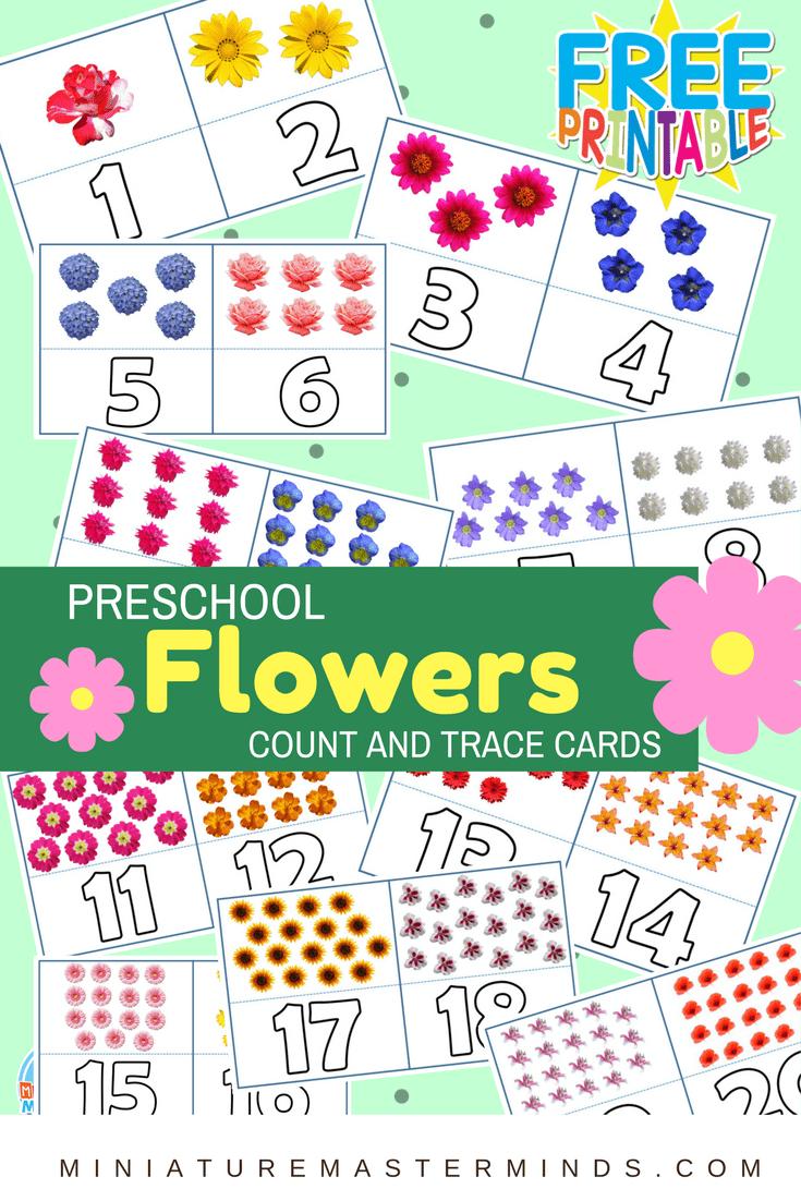 Preschool Flowers Count And Trace Flash Cards 1 20 Counting Activities Preschool Clip Cards Preschool Preschool [ 1102 x 735 Pixel ]
