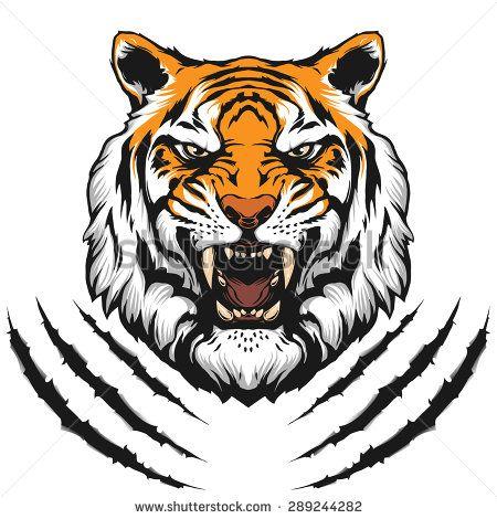 Tiger Face Stock Vectors Vector Clip Art Tiger Face Tiger Head Tattoo Tiger Art