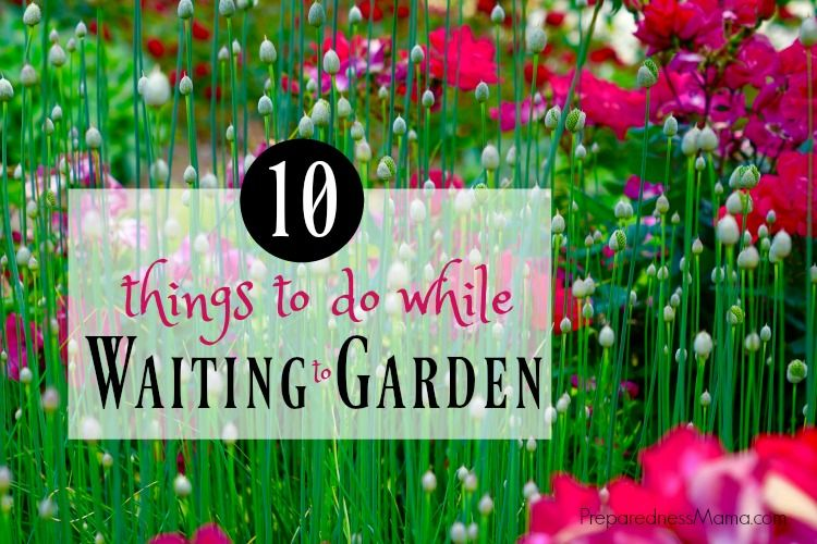 10 things to do while waiting to garden | PreparednessMama
