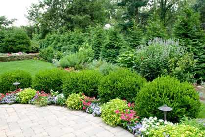 Attirant Landscaping With Shrubs And Bushes Pictures And Easy Design Ideas