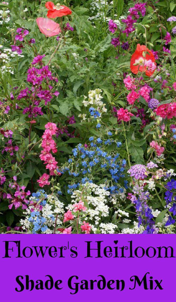 Shade Garden Flower Mix Flower Seeds Non Gmo Open Pollinated Untreated Heirloom Native Flower Seeds Ad Flowers Ga Flower Seeds Shade Garden Flowers