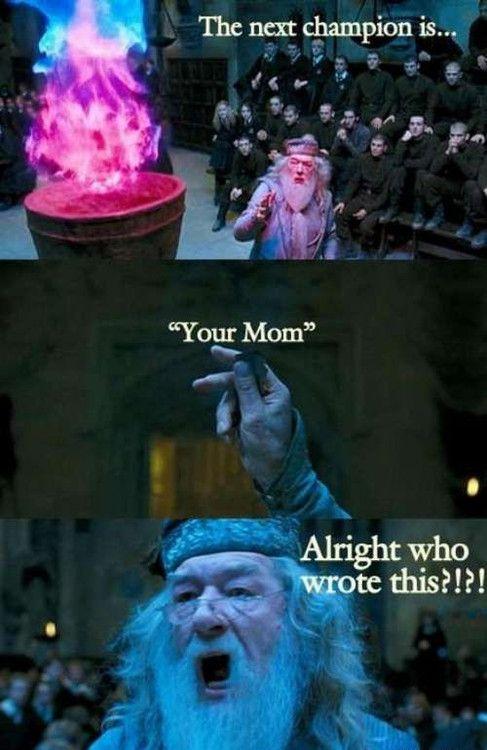 tri wizard tournament   Just excellent      Harry potter