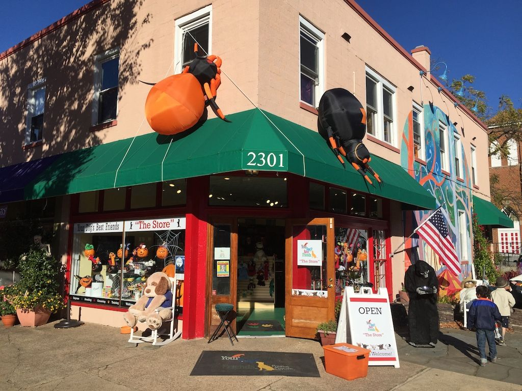 Love This Halloween Spirit From Your Dog S Best Friend In Del Ray Spirit Halloween Dog Best Friend Spooky Halloween