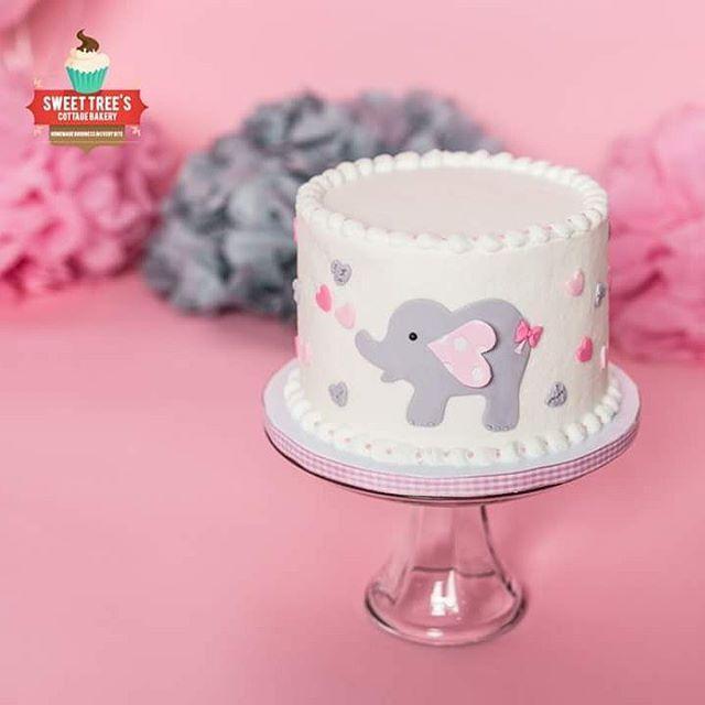 Bellas Rose Cottage Via Jennifer Beaton: Smash Cake First Birthday