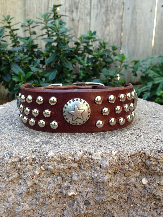 The Bandolero dog collar by True Blue Collars