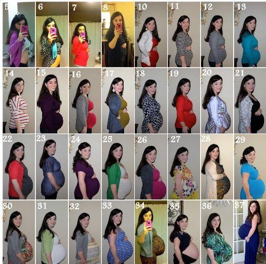 Pregnancy month by month development | Baby stuff | 20 weeks