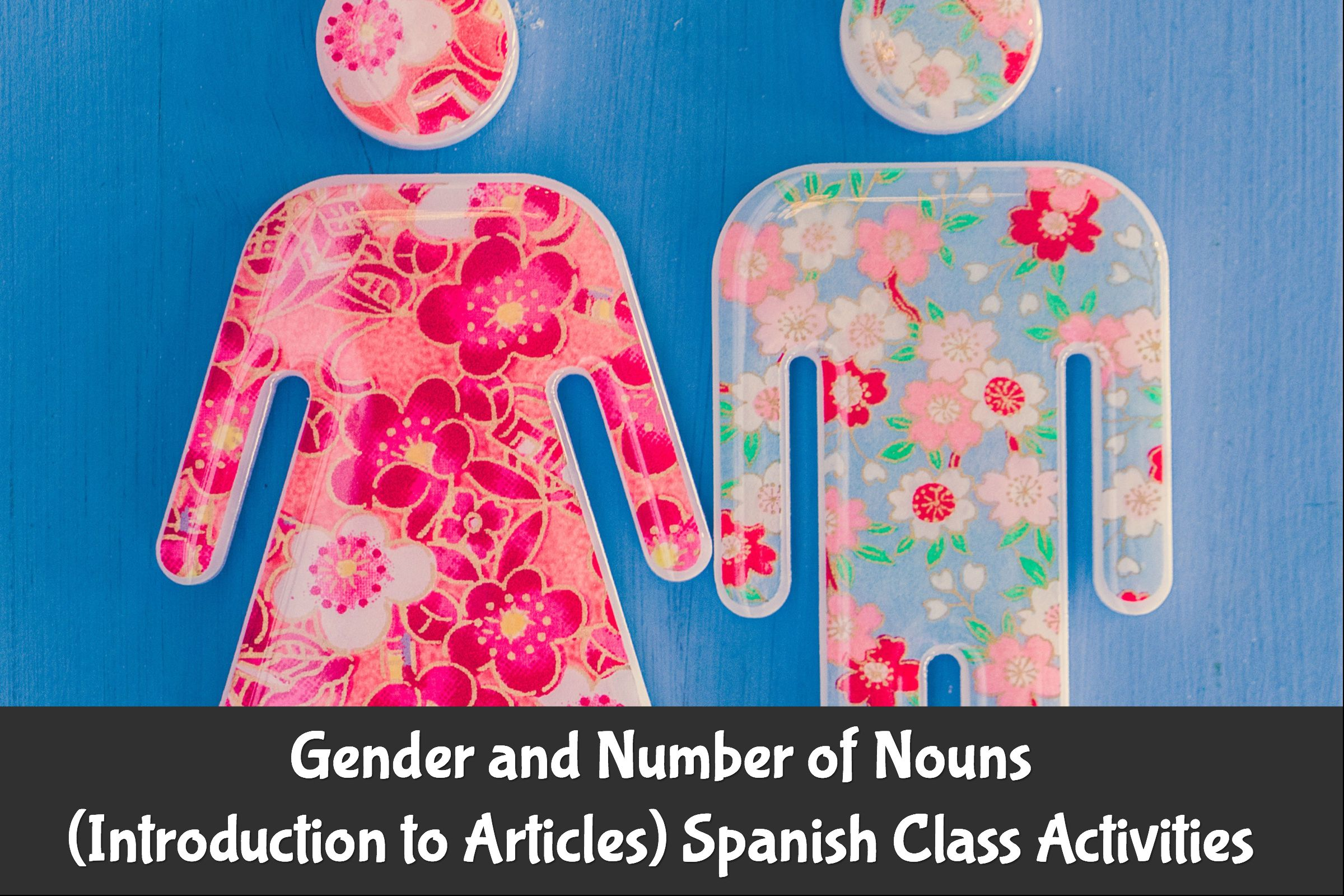 Gender And Number Of Nouns Introduction To Articles