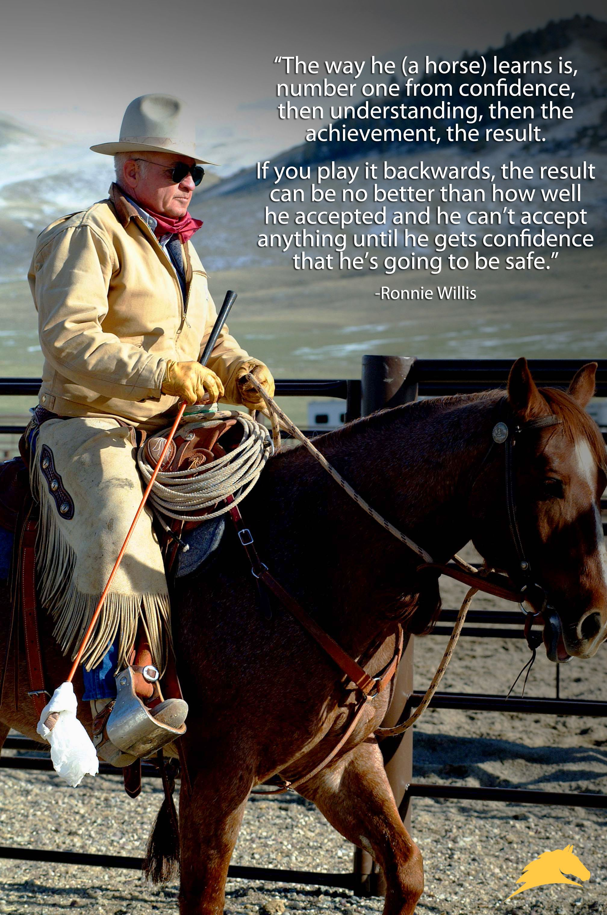 Wise words from master horseman, Ronnie Willis.