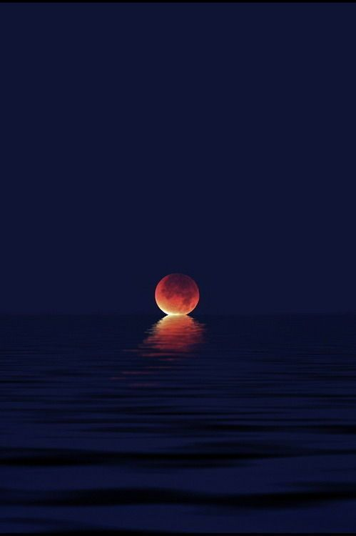 When the Moon Kisses the Sea @BestEarthPics