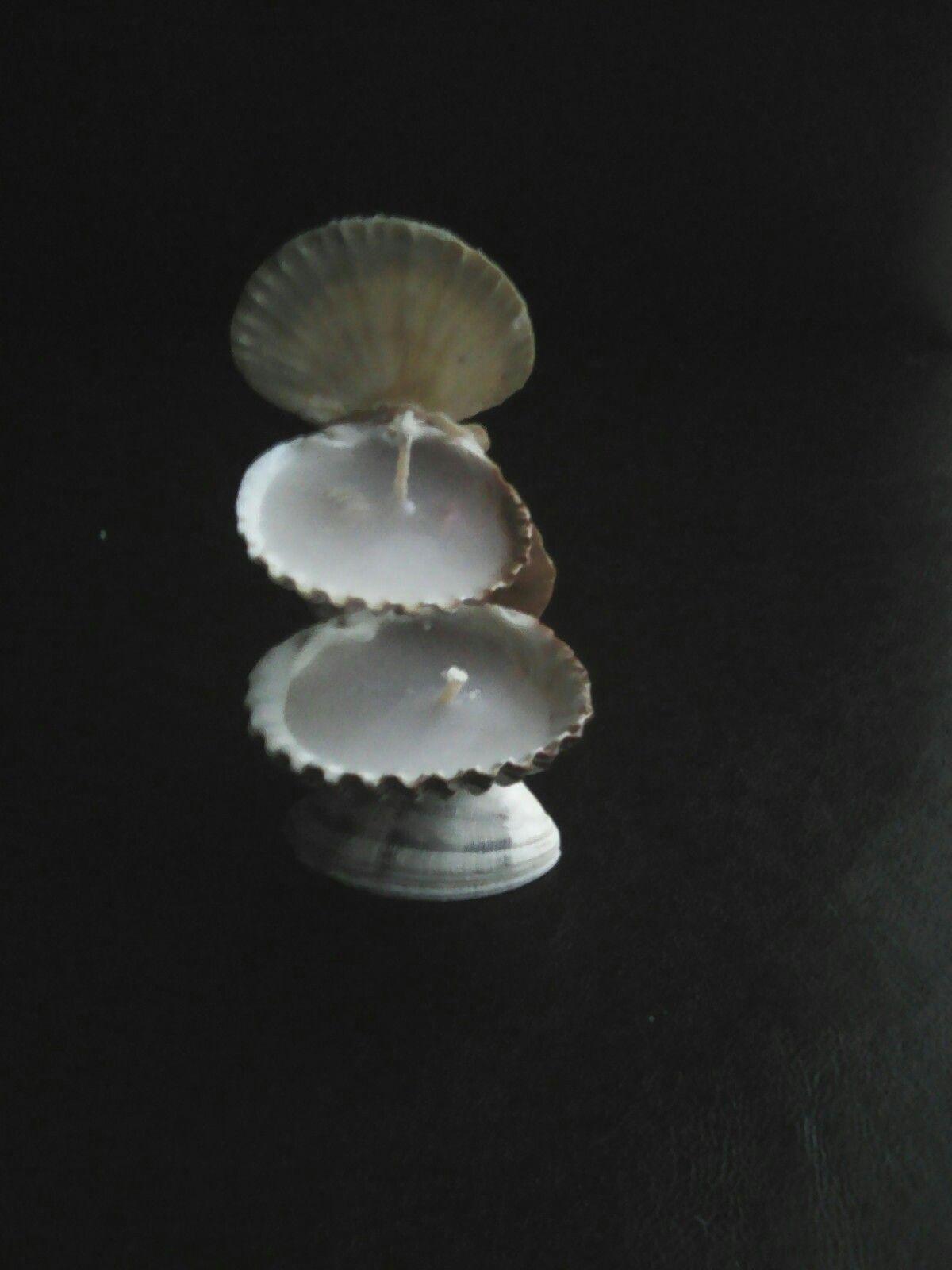 Deniz Kabuklarından Askılı Süs Yapımı