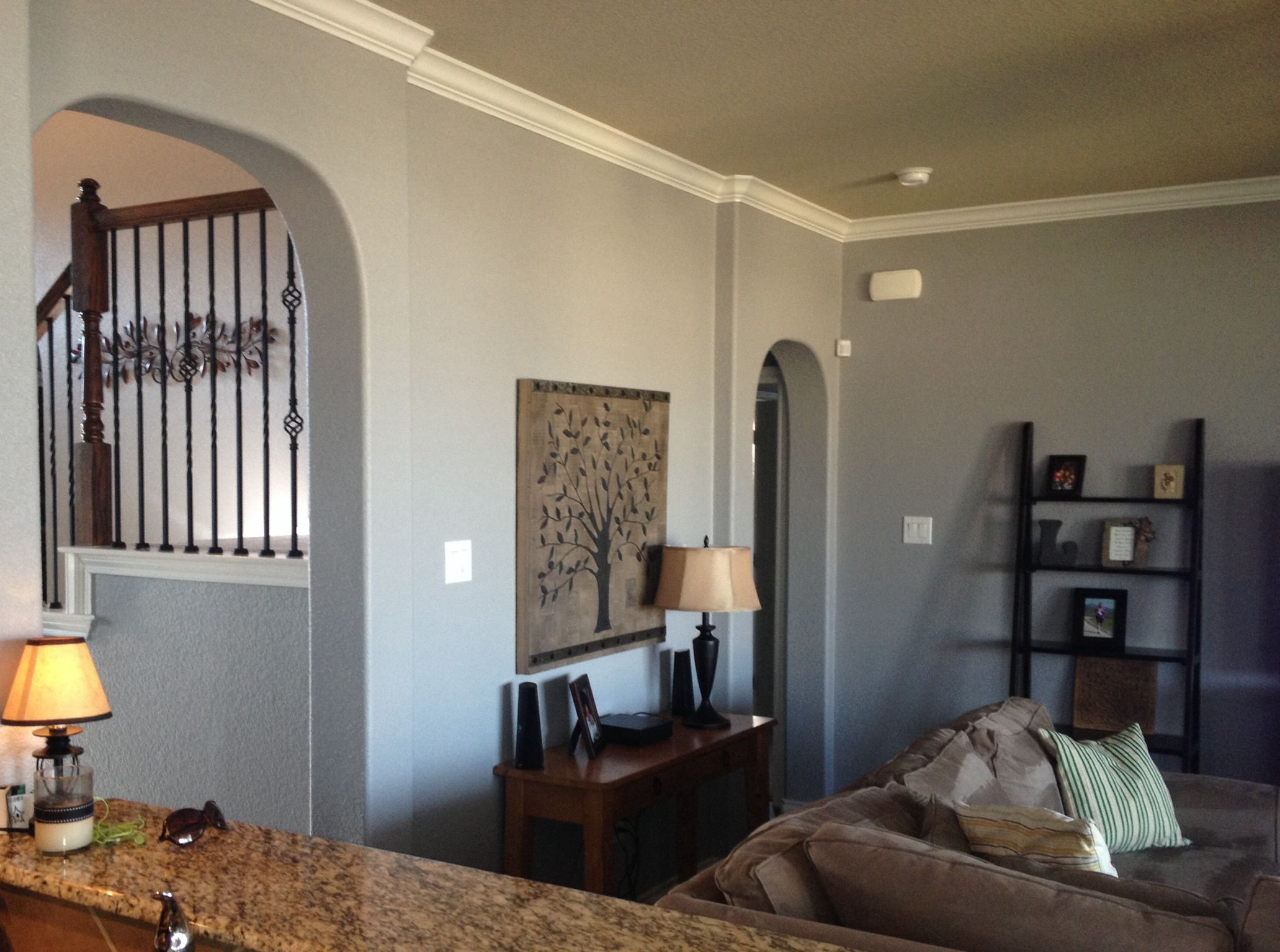 Paint Behr Sparrow A True Grey When The Paint Was