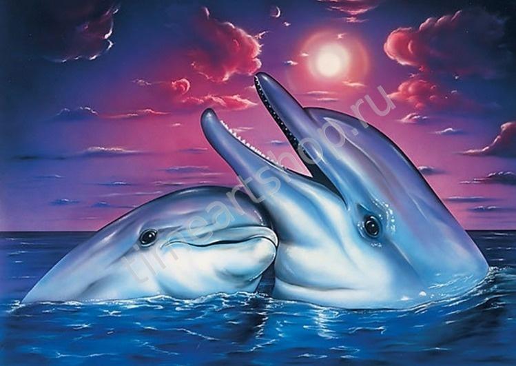 Дельфины и лунная ночь. Набор для творчества: картина ...