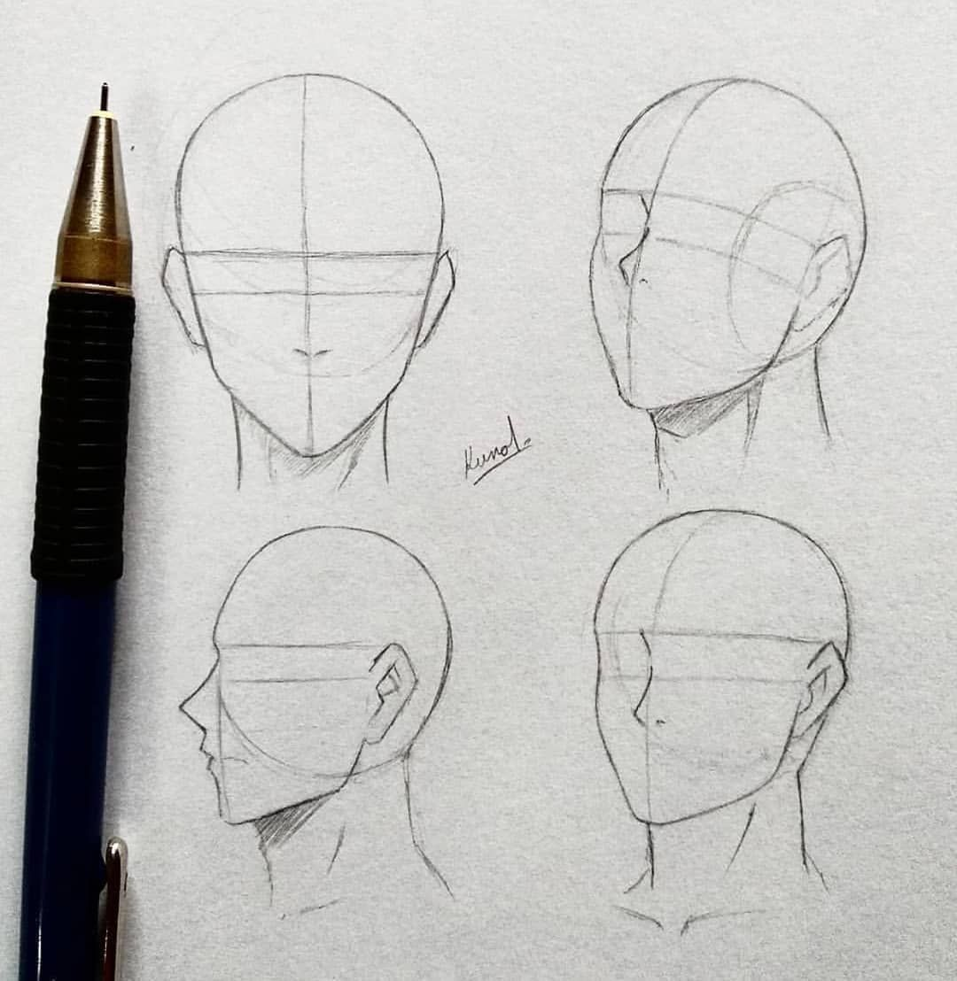 Anime Ignite On Instagram Head Anatomy By Kunaru Follow Anime Ignite In 2020 Sketches Drawings Art Drawings Sketches