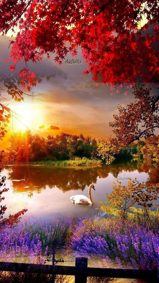 Photo autumn The post Photo appeared first on Trendy  is part of Beautiful photography nature -