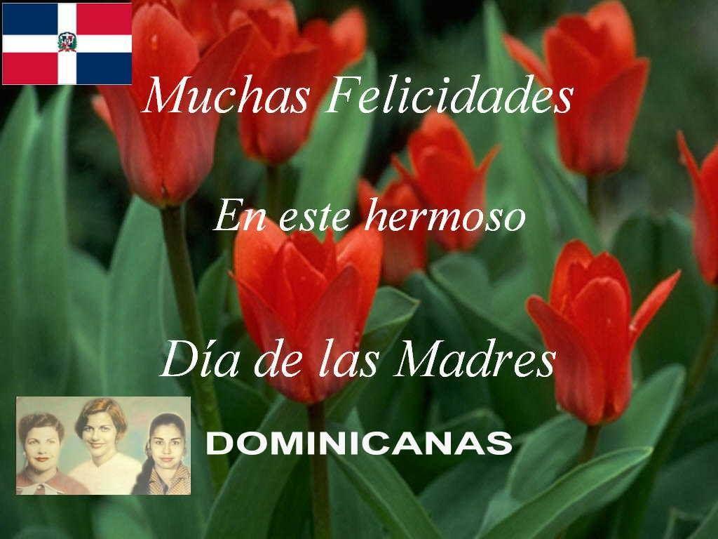 Resultado de imagen para madres dominicanas