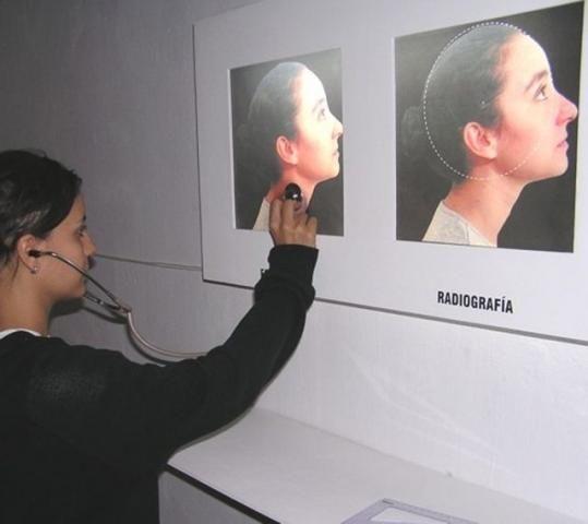 Guadalupe Aguiar - Historia Cínica. (2005) Detalle: estetoscopía. 200 cm. x 130 cm. x 25 cm.