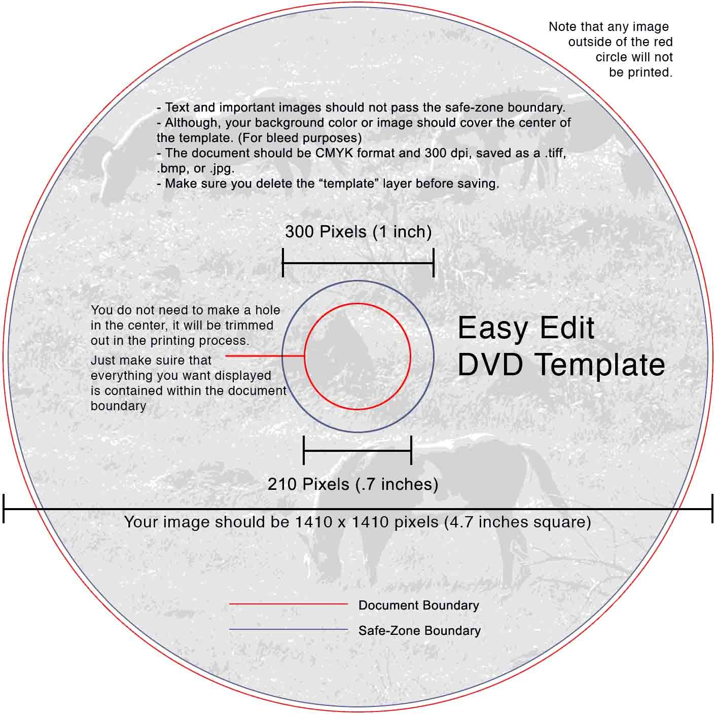 Dvd Label Template  Easy Edit Video Services