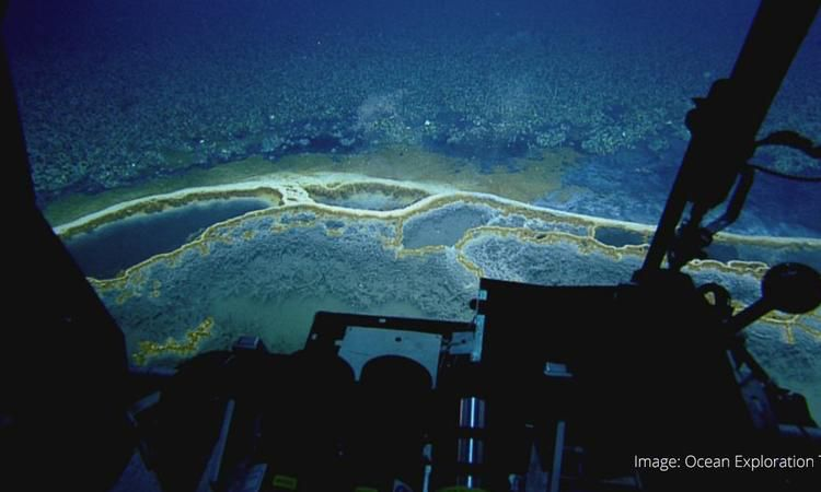 The Jacuzzi Of Despair Is A Deadly Lake Within The Gulf Of Mexico Underwater Lake Cool Places To Visit Gulf Of Mexico