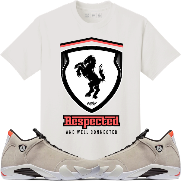 cadc3d05fed741 1 selling shirt for the Jordan 14