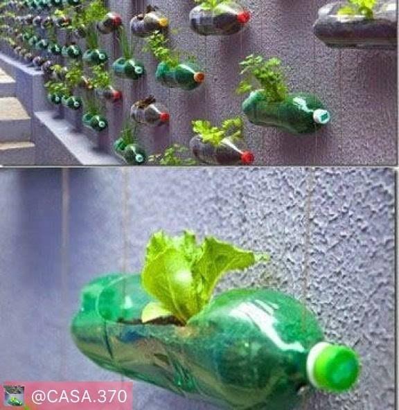@casa.370 #Regram via @PackeDApp #PackeDApp great ideal Ideia de horta vertical para quem tem pouco espaço e cachorros maloqueiros como eu kkkk #jardim #horta #reciclagem #gardner #casapropia #casanova #diariodereforma #diariodeobra #reforma #obra #sustentabilidade #natureza #nature #minhacasaminhavida #minhacasa #novacasa #nossolar #nossacasa #mcmv #casa #house #home #homesweethome by shellybrowns http://ift.tt/1UqrU3J
