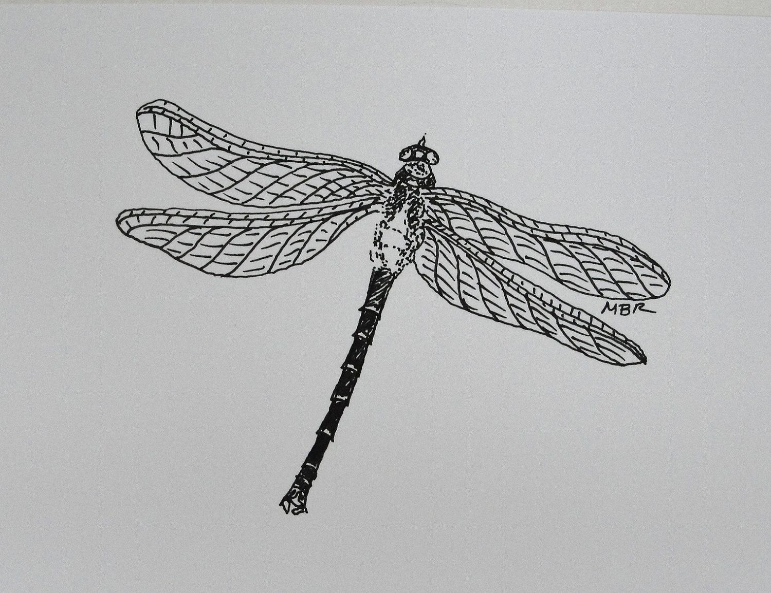 Line Drawing Giraffe : Original art ink drawing dragonfly black and white insect