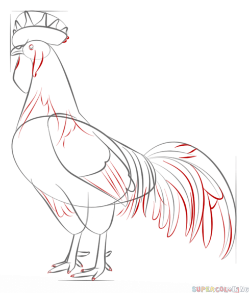 how to draw a rooster step by step drawing tutorials for kids and beginners