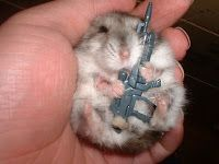 I shall enlist...People will call it...The War against People vs. Hamsters...Hamsters will call it... War War against Common Sense vs. Admirable Mini's