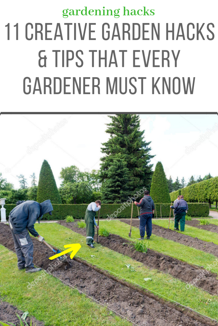 4b39e4c2847839659839a9a5677a1927 - How Much Should A Gardener Cost