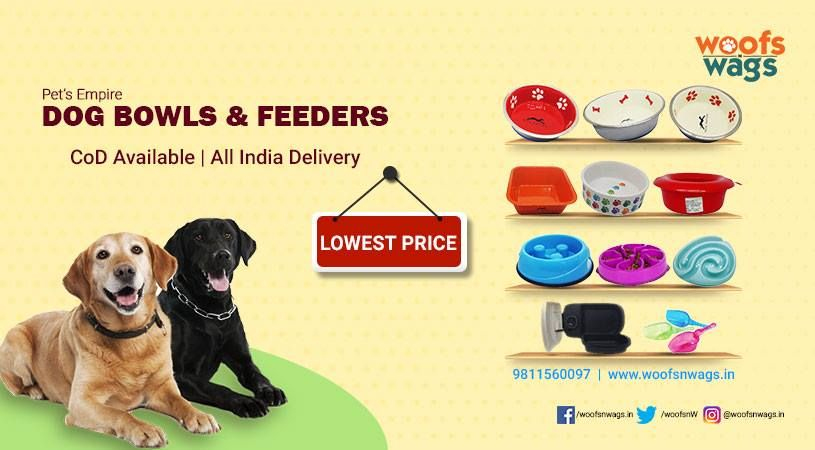 Latest Posts Online Pet Supplies Pet Supply Stores Buy Pets