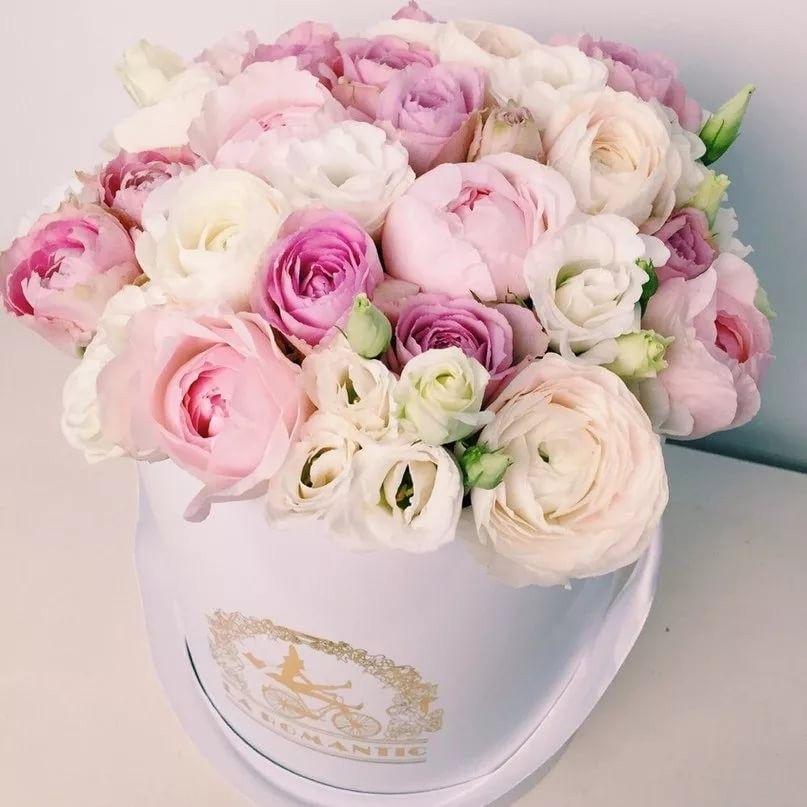 Картинки цветов в коробке красивые